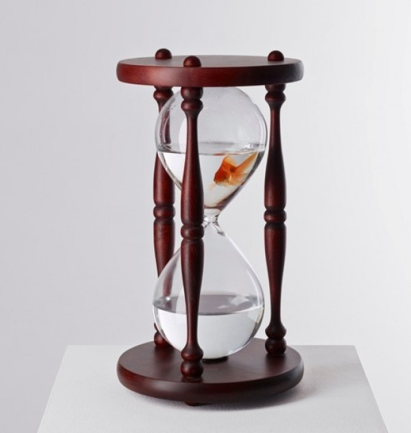 KEY IMAGE FISH IN EGG TIMER